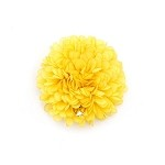 Lemon Auset Hair Clip - for all ages